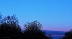 Blue Hour, Moon Rising Over 96 East Bound Going Home (rosearodoe) Tags: blue michigan east hour pure 96 kentottawacountyboundrylines