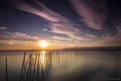 Reflections IX. -Parhelion- (dasanes77) Tags: sunset lake seascape net water valencia clouds reflections landscape mirror heaven shadows horizon tripod calm canes parhelion bluehour dramaticsky cloudscape waterscape canonef1635mmf4lisusm cloudsmovement canoneos6d albuferaofvalencia