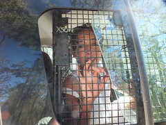 Deborah Hart, 51, Melb in the back of a police vehicle (climateguardians) Tags: from by evans image jo push pilliaga