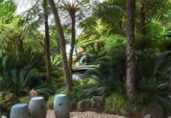 Madeira Funchal Botanical Garden (michaelbeyer_hh) Tags: botanicalgarden madeira