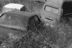 Location shot for 'The life we know' 2. (df-stop.) Tags: blackandwhite cars abandoned overgrown monochrome grass canon movie sunny greece vehicles movies thessaloniki softfocus timeless thefuture wrecks wasteland thepresent macedonian vwcamper makedonia 600d locationshot  macedoniagreece dfstop thelifeweknow bodgefilms