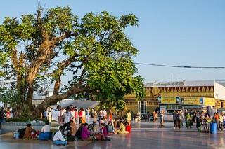 pagode de kyaiktiyo - rocher d-or - myanmar 3