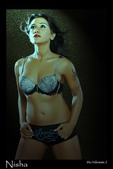 Bollywood Actress NISHA YADAV-HOT AND SEXY IMAGES-SET-2 (4)