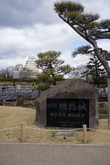 (terefly) Tags: heritage cherryblossom sakura nationaltreasure himejicastle blossomcherry