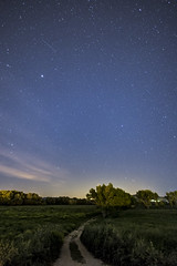 Grosseto, 25 aprile (Francesco Collina) Tags: g fiume cielo 20mm nikkor 18 grosseto stelle stellato argine ombrone