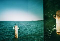 bollard (maikdoerfert) Tags: sea water analog germany lomo lomography nikon waves horizon balticsea diana dianaf bollard overlapping zinnowitz northerngermany d90 nikond90 dianamini