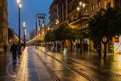 Seville Jan 2016 (12) 013 - Wet and dark in the city (Mark Schofield @ JB Schofield) Tags: santa plaza bridge parque people streets wet public caf rio architecture bar night umbrella reflections river dark ceramic puente graffiti la los spain guadalquivir san expo cathedral maria candid transport iglesia tram seville espana cruz tiles parasol universidad alcazar pavilion oranges harp andalusia cobbles encarnacion luisa giralda isla embankment metropol arenal justa triana macarena remedios cartuja alamillo bernado chapina