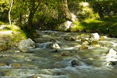 pekeo rio (ebsigma) Tags: naturaleza rio river atardecer flor amarillo vida araa curva largaexposicion dilar