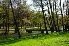 spring in the park (JoannaRB2009) Tags: park bridge trees light shadow green nature water river landscape spring pond view poland polska sunny lodz d lodzkie parkjulianowski dzkie sokowka parkimamickiewiczawodzi parkjulianw