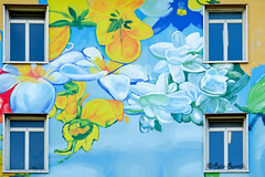 "Roma. Tor Marancia. Urban art. ""An even humanism"" by Gaia. Wip (R come Rit@) Tags: urban italy streetart rome roma muro art wall photography graffiti italia arte workinprogress streetphotography wallart wip urbanart walls graff gaia atwork graffitiart muri arteurbana graffitirome italystreetart streetartitaly romegraffiti graffitiroma streetartrome streetartphotography romastreetart streetartroma romestreetart urbanartroma ritarestifo romeurbanart anevenhumanism"