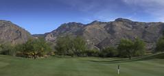 DSC0109116-04-30 (snef098) Tags: flower golf flickr place tuscon bougainvillea courses vistoso vantanacanyon