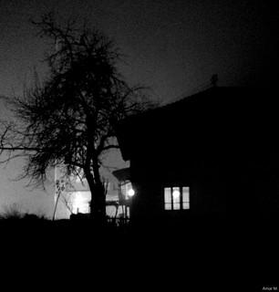 Old house i tree