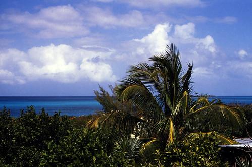 "Bahamas 1988 (312) Rose Island • <a style=""font-size:0.8em;"" href=""http://www.flickr.com/photos/69570948@N04/23586921764/"" target=""_blank"">Auf Flickr ansehen</a>"