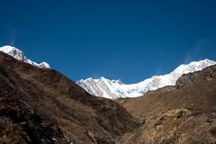 Looking up (Pooja Pant) Tags: nepal mountains beautiful trek abc annapurna annapurnabasecamp macchapuchre