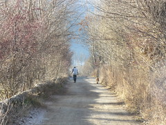 Fent cami (cincde82012) Tags: winter dog man home walk catalonia cami mati cerdanya hivern puigcerd matinada