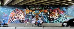 Magia... La chispa que nos acompaña. (Jorge Niño) Tags: streetart cali jaguar magia streetartnews