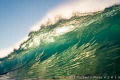 Sandy Beach (j . f o o j) Tags: sandys sandybeach nikkor50mmf14d halfpoint liquideye liquideyewaterhousing nikond610