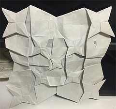 In a nutshell (o'sorigami) Tags: art paper star origami fractal complex tessellation paperfolding folding