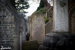 Eleanor Rigby (gigchick) Tags: england grave liverpool tour cab taxi tombstone beatles eleanor fab4 thebeatles fabfour rigby eleanorrigby