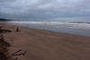 Shifting Sands,Sands of St Cyrus,St Cyrus National Nature Reserve_jan 16_672 (Alan Longmuir.) Tags: aberdeenshire grampian blowingsand stcyrus shiftingsands sandsofstcyrus stcyrusnationalnaturereserve