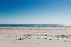 Padre Island National Seashore 2/14/2016 (savoy9020) Tags: texas beaches padreisland