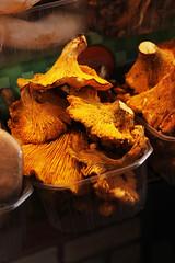 Boqueria (Emily's mind) Tags: barcelona mushrooms market funghi mercato seta boqueria barcellona bolet