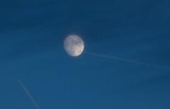 Rush hour Moon 21 Jan 2016 (Sculptor Lil) Tags: moon london astrophotography handheld waxinggibbous flyby daylightmoon canon700d dslrsingleexposure