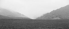 Araluen (Macr1) Tags: camera bw copyright mountains field fog lens landscape outdoors nikon day australia location nsw newsouthwales geography aus araluen conditions d700 nikond700 markmcintosh afsnikkor70200mmf28gedvr macr237gmailcom markmcintosh