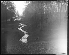 At the aarhus deer park (nicholas dunning) Tags: ocean camera travel bw white black film water analog river landscape denmark outdoors diy europe fuji view large 4x5 hp5 format analogue ilford fujinon aarhus 135mm
