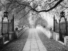 Foggy Morning - Clare College Bridge (davepickettphotographer) Tags: uk morning travel bridge college tourism fog clare foggy monotone historic gb cambridgeshire cambridgeuniversity em1 olympuscamera davepickettphotographer