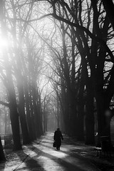 Memories (mystery_live) Tags: world park shadow people woman white black three shine poland p pollen threes mysterylive