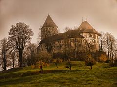 Schloss Trachselwald (bolliger51) Tags: schweiz nebel herbst bern che schloss burg herbstlaub emmental wappen mittelalter herbstfrbung kantonbern trachselwald bernerbr bernerwappen nebelstimmung schweizsuissesvizzeraswitzerland