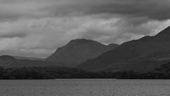 LochLomond_RossPriory_20150811_IMGQ9621_s (Andrew-Holloway) Tags: lochlomond rosspriory
