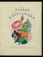 Floras dictionary2 (Mann Library) Tags: illustration rarebooks specialcollections posey mannlibrary floriculture languageofflowers cornelluniversitylibrary