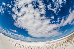 Fisheye View of Gypsum Dunes in White Sands National Monument (Lee Rentz) Tags: usa newmexico southwest nature america lens landscape sand desert whitesands dunes dune fisheye northamerica gypsum whitesandsnationalmonument tularosabasin chihuahuandesert dunesdrive