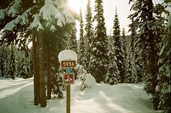 ski trail (ulanalee) Tags: winter snow ski film nature forest 35mm lomo lca lomography skiing xcskiing crosscountryskiing