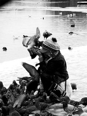 kuschelmuschel (PIK♠DAME) Tags: sw bwphotography bwlondon nikpic bwbirdlove nikseestheworld