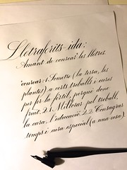 Lletraferit-ida (xelo garrigs) Tags: calligraphy copperplate caligrafa inglesa calligrafia fotosenstreaming