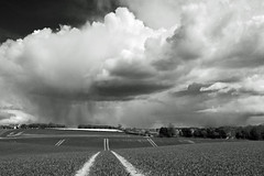 """Thunder Road"" (AndyorDij) Tags: uk trees england blackandwhite bw storm monochrome mono unitedkingdom tracks fields rutland 2016 empingham highfieldsfarm"