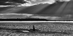Shining Down (Tilney Gardner) Tags: blackandwhite seascape coast dorset poole crepuscularrays pooledorset