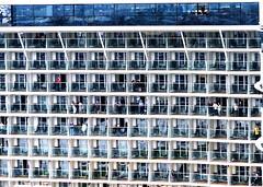 One day neighbours (louise peters) Tags: cruise rotterdam kade tourist moore cruiseship neighbours buren wilhelminakade afmeren toeristen wilhelminapier aanmeren ovationoftheseas