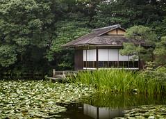 Tea House (fantommst) Tags: house building japan gardens architecture reeds pond kyoto tea lillies shoseien kyotoshi lisaridings fantommst