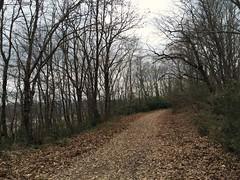 Trekking Parkuru (Kepils) Tags: trekking ağva kilimli