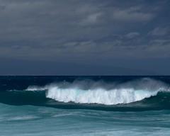DSC_5351 e5 (J Telljohann) Tags: hawaii maui hookipa
