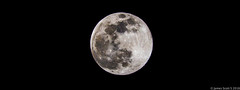 20160421 70D Full Moon 48-2 (James Scott S) Tags: sky moon black beach canon dark la florida space tripod sigma luna palm full fl phase lunar 70d lrcc 150600