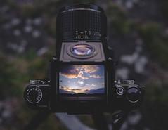 Pentax 67 (Voigtography) Tags: berlin clouds analog fuji pentax velvia fujifilm medium format analogue finder viewfinder tempelhof groundglass pentax6x7 pentax67 skyporn mattscheibe waistlevelfinder