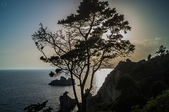 The Tree on SunSet (ivan.neshovski) Tags: sunset sun tree beach nature landscape island rocks europe sony greece balkans 1855 root corfu sonyalpha rootphotography sonylens sonyshots sonyimages sonya58 sonyslt58