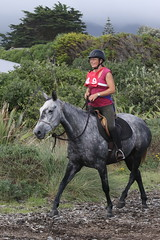 IMG_EOS 7D Mark II201604039885 (David F-I) Tags: horse equestrian horseback horseriding trailriding trailride ctr tehapua watrc wellingtonareatrailridingclub competitivetrailriding sporthorse equestriansport competitivetrailride april2016 tehapua2016 tehapuaapril2016 watrctehapuaapril2016