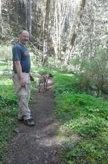 tillamookhike11 (jcravens) Tags: oregon forest hike campground galescreek stateforest tillamookforest