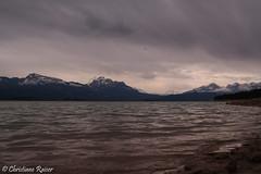 Forgensee (C.Raiser) Tags: cats pets sun lake alps water rain fog landscape island see ducks insel neuschwanstein garmisch fssen zugspitze allgu forgensee eibssee